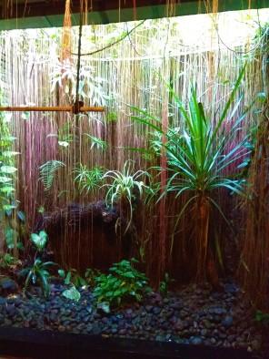 Kamar Mandi Jungle
